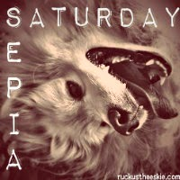 sepia_saturday_blog_hop_badge_200