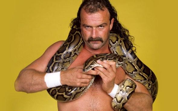 the-snake-2087088
