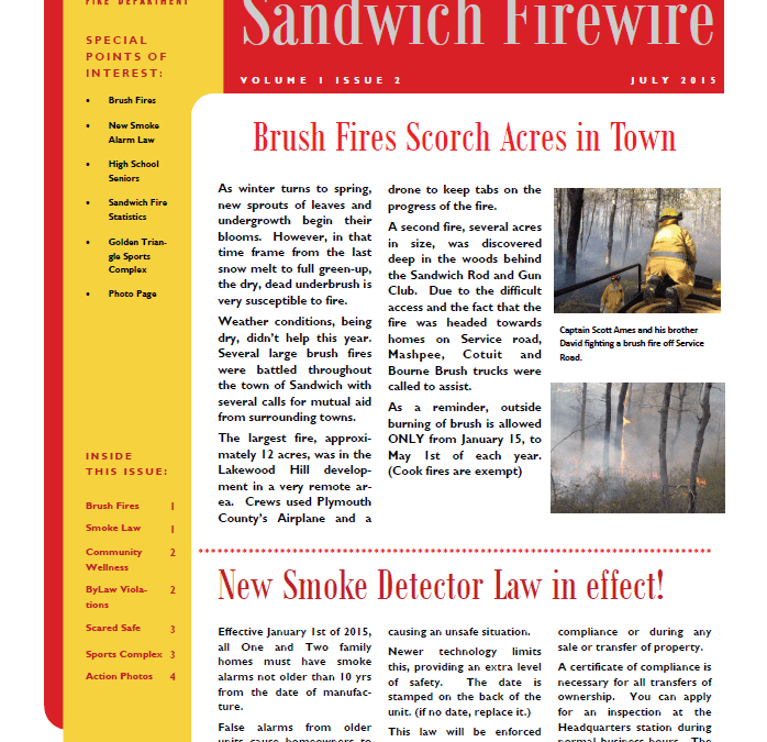 Sandwich Firewire Vol. 1 Issue 2