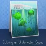 Coloring an Underwater Scene