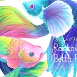 Magical Monday: Rainbow Betta Fish Drawing