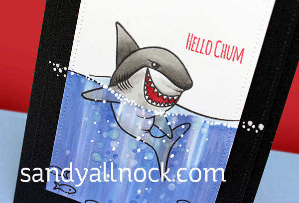 Sandy Allnock Shark underwater