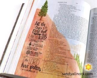 Sandy Allnock Bible Journal He has Spoken