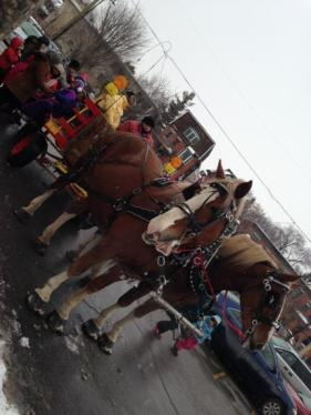 The ever popular wagon rides