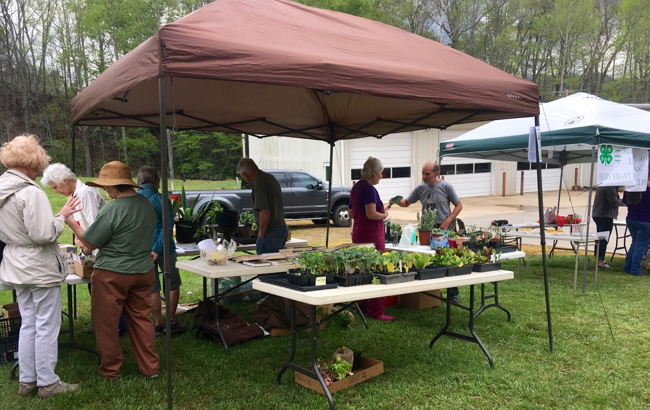 Garden Swap Tent Area with plants