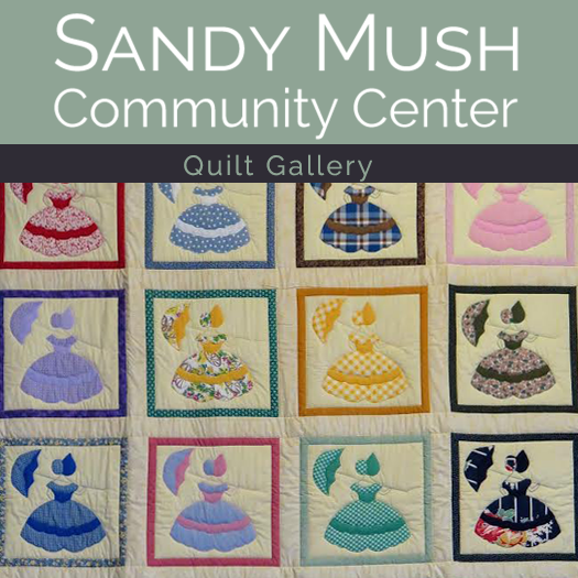 Sandy Mush Quilt Gallery on Display