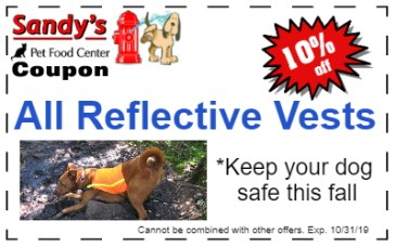 reflective vests 10-19