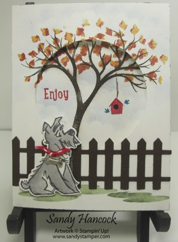 Pampered Pets, Surprise Window Card