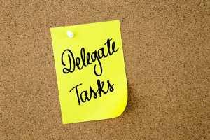 delegate tasks/sanespaces.com