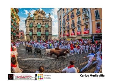 Carlos Mediavilla - Premio Especial