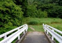 赤津川を渡って登山口。