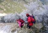 13坂下峠に降りるまで樹氷は尽きませんでした。