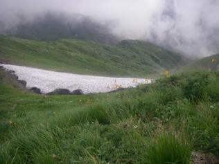 10 ニッコウキスゲに雪渓