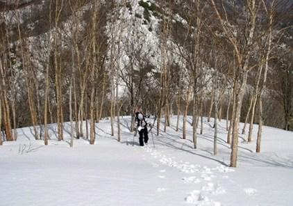 急傾斜なんです。。。スキーは、重い。。。
