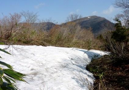 雪田のむこうに金糞岳が見える。