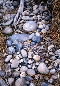 山頂なのに丸い石がいっぱい