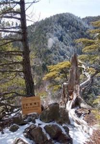 ⑧マイナーピーク前衛峰1992mからの御座山。
