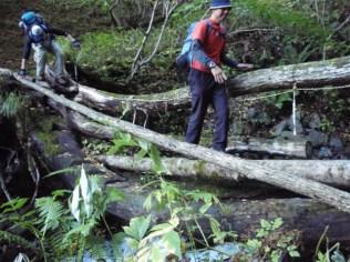 32‐丸木1本橋は良く滑る