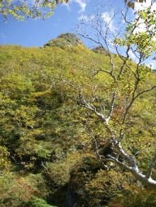 13.登った斜面、、、岩場の上に山頂