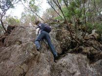 慎重に登ります。