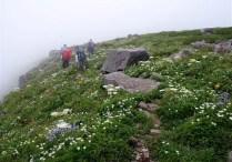 ⑫笙が岳を後にお花畑の長坂尾根を下る。