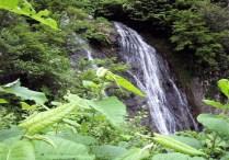 ①滝入りコースは美しい滝が多い。コース1番の滝。