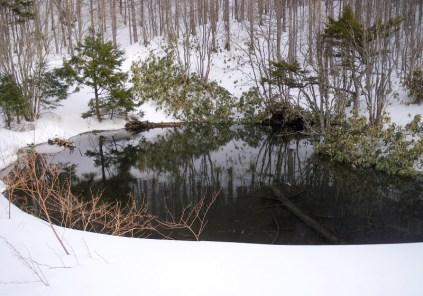 28 凍っていない野熊ノ池