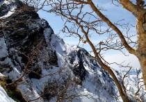 04.雪稜から、上部岩壁を見上げる