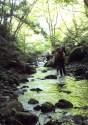 八池谷遡行~八つ淵の滝(比良) (10)