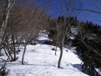 02.樹林を登る。