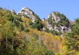 秋色に包まれた小川山