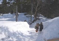 西穂高岳(2908m)(北アルプス) (1)