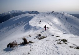 西穂高岳(2908m)(北アルプス) (13)