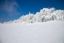2012年01月29日御池岳 (72)