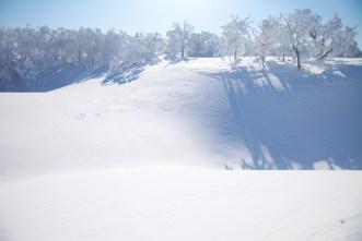2012年01月29日御池岳 (68)