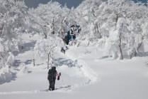 2012年01月29日御池岳 (40)