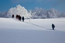 2012年01月29日御池岳 (10)