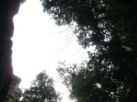 城ヶ崎・城山12.01.14.15 (69)