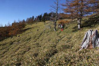 35 笹山に向かって