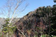 16 奥丸山の西斜面