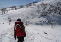 藤原岳(1,140m)