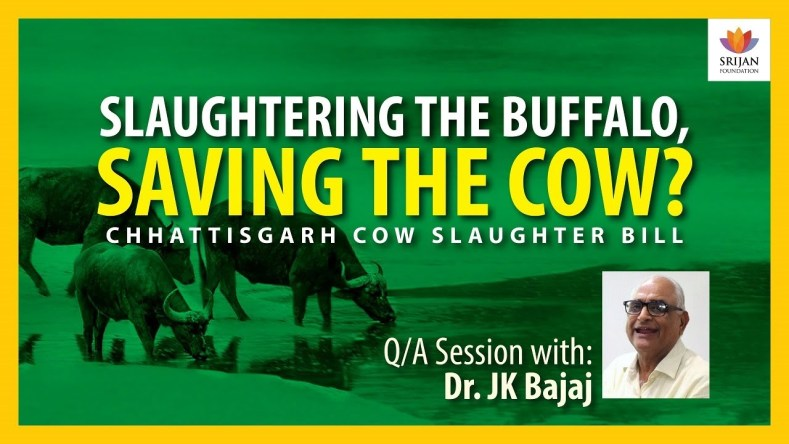 [Q/A] Should India Slaughter 1,00,000 Buffaloes Every Day for Export? — A Talk By J K Bajaj