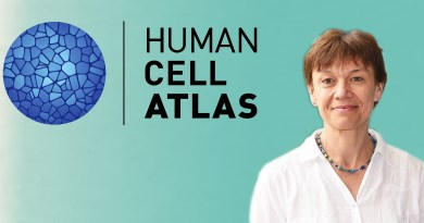 Kerstin Meyer, a Principal Staff Scientist at the Wellcome Sanger Institute explains what it is like to work on the Human Cell Atlas Project