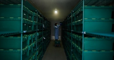 Sunil Dogga working in the sample storage freezer