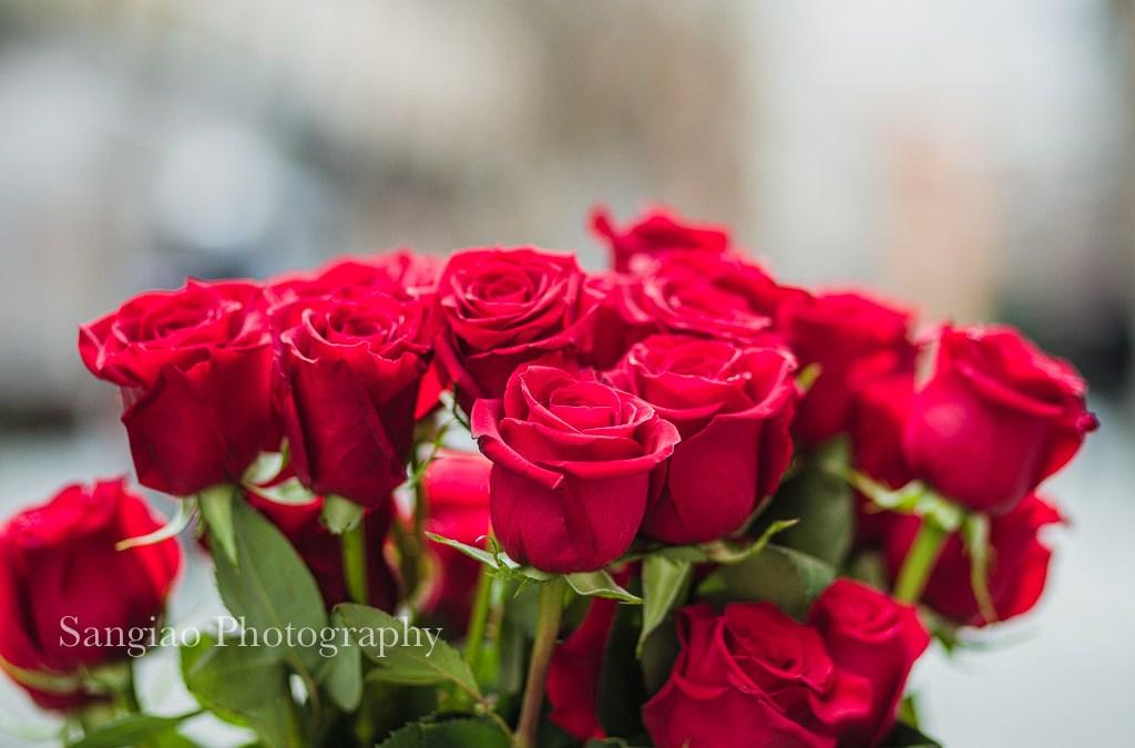 Rosas Colombianas. Regalo de flores para San Valentín.