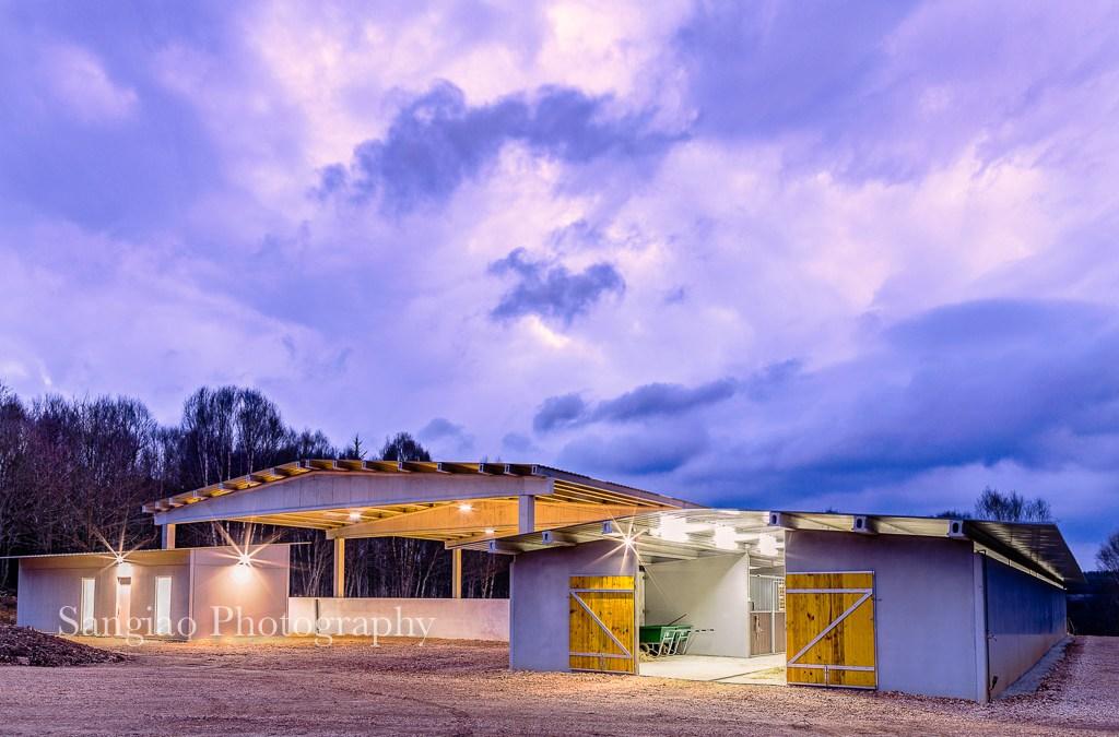 Fotos de Caballos y página Web | inauguración Hípica en Coruña Prado Ventura