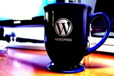 Let Us Install & Setup Your New WordPress Blog For FREE