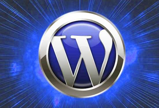How To Add Extensive Editing Options In WordPress?