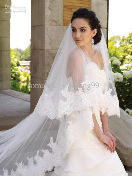 simple lace cathedral length train white wedding veil