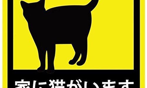 【ネコ飼い必見】ロードバイクや車に貼りたいネコステッカー